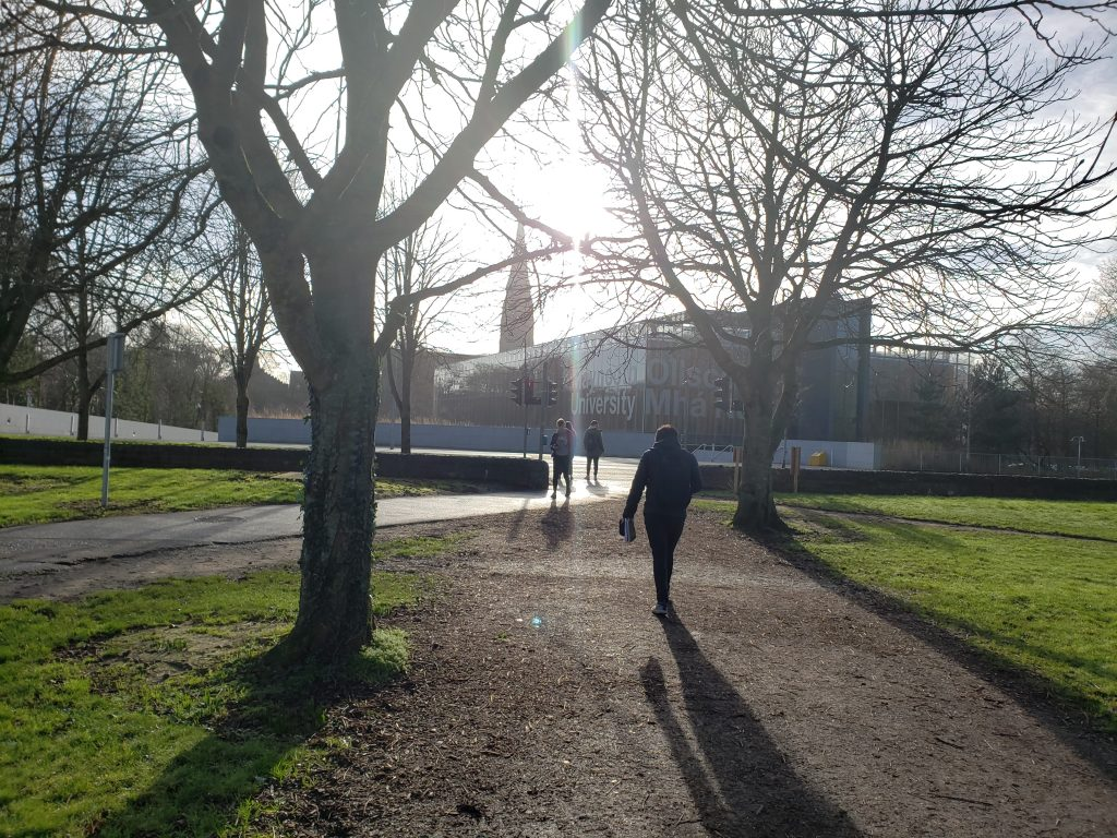 Towards the Maynooth University Library